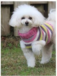 ずっと前からお願いしてたワンコの手編み入りました♬