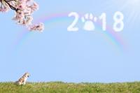 謹んで新春のお慶びを申し上げます 2018/01/02 17:12:15