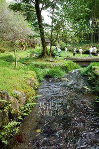 島津荘水流百景-013 / 祓川(はらいがわ)湧水