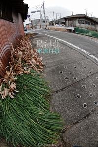 島津荘水流百景-009 / 八幡町