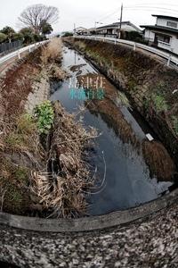 島津荘水流百景-004 / 早鈴町(苦言呈します)