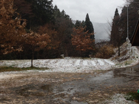 南国宮崎の雪国五ヶ瀬