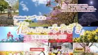 【花いっぱいのみやざき写真コンテスト2017・・・