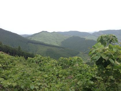 リハビリライドin椿山