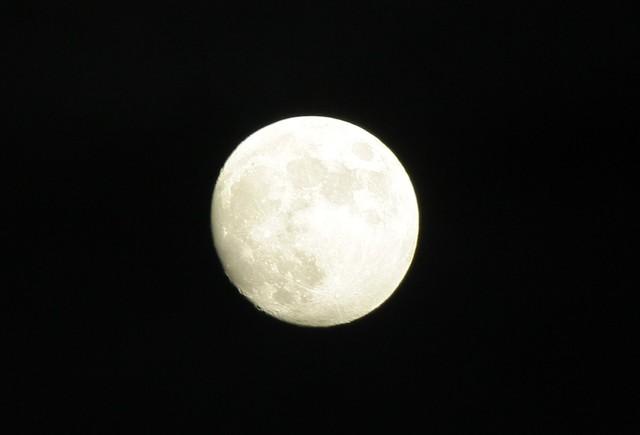 おっ月様!こんばんみ
