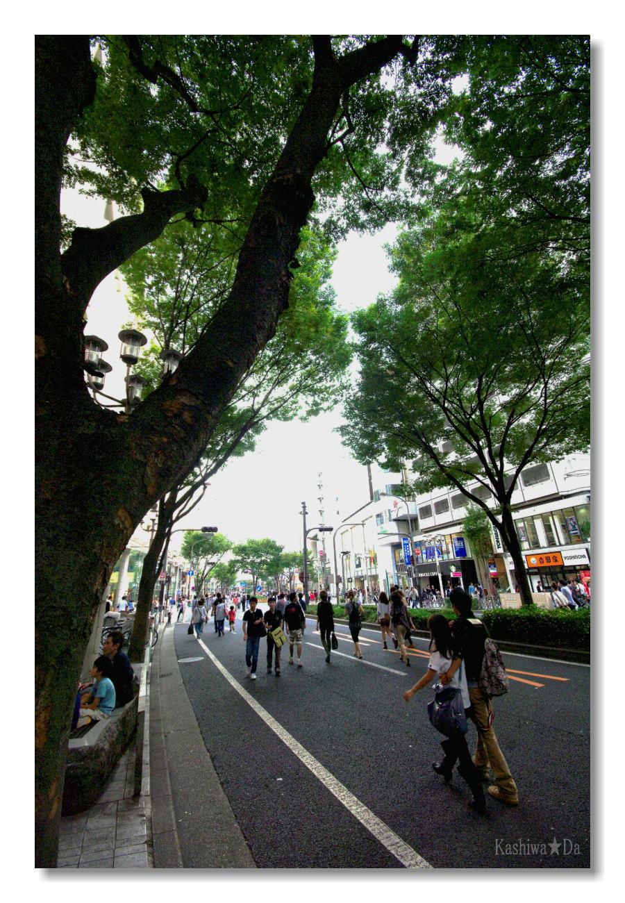 4-12[仮想プラン]本駅前に「ホコ天緑地」を設ける