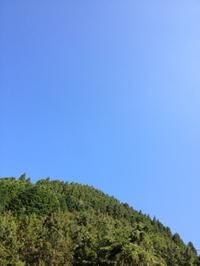 秋晴れのカヌー日和
