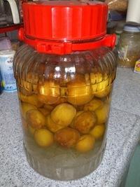 今年は、梅酢を漬けました。
