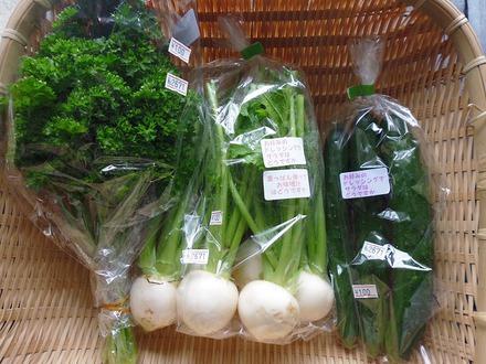 入荷しております、野菜のご紹介です!