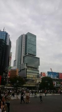 東京出張 展示会♪ 2・3日目