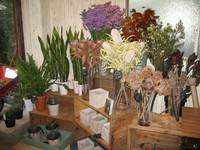 もくもく工房「アトリエ」ゲストのお花屋さん。