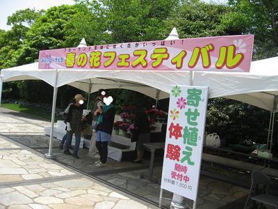 フローランテ「春の花フェスティバル」に行って来ました。