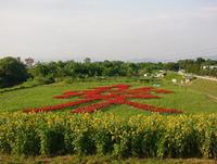 ネッツ花いっぱいまちづくり ネッツトヨタ山形!