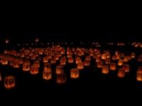高鍋城灯籠祭り