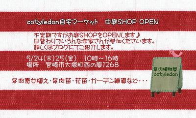 24日(木)25日(金)コチレドンさんお庭ショップ