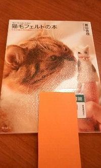 猫毛フェルトと「~う~」