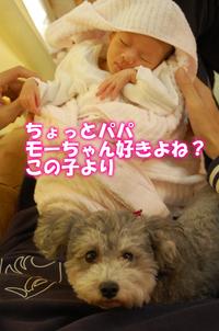 別冊モー犬注意!!