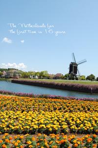 オランダに帰る