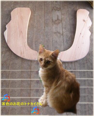 トナカイ猫