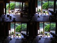 朝の日曜日(親子猫3匹)