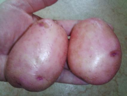ピンク色したじゃがいも料理♪