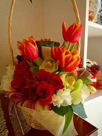 チューリップが咲き終わったら。。。 2012/03/08 18:20:18