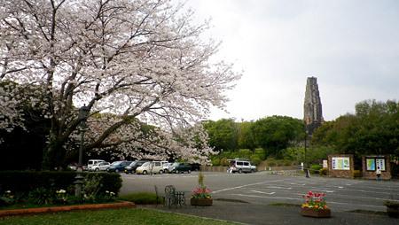 春のひむか村イベント情報です。