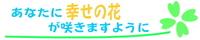 新しい動画☆