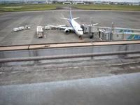 ブーゲンビリア空港での写真WS・3!