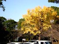 天神山公園での写真WS!