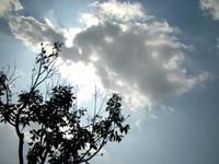 日南中央公園での写真WS・3!
