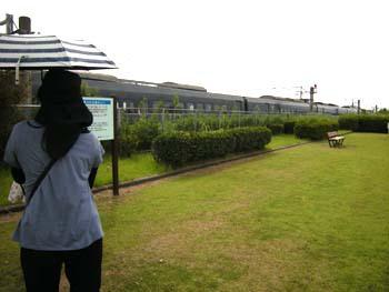 空港近くの公園での写真WS!