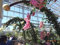 青島亜熱帯植物園での写真WS!