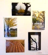 写真教室展の展示写真・2!