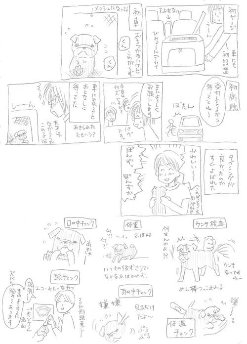 動物病院1-1