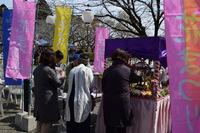 今年の桜まつりは何かが違う…(*^。^*)♪