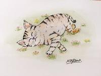 猫をフリーハンドで描きます