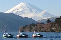 富士山とディナー試食会