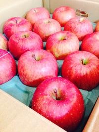 秋田のリンゴ