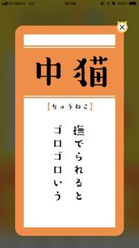 おみくじ 2019/05/23 00:28:35