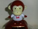 猿女(サルージョ)