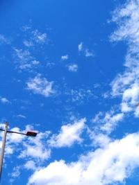 晴れ渡る空に白い雲♪