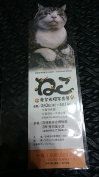 宮崎猫展PR隊