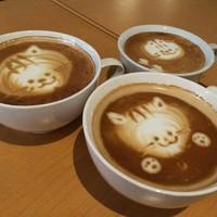 宮崎猫展PR隊③