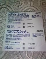 ノラ猫さん 保護活動 保護猫 宮崎市