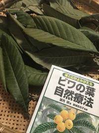 ビワの葉エキス♡ビワの葉茶♡ビワの葉