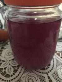 自家製化粧水 アロエベラチンキ
