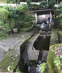 名水百選 石坂井川