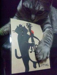 コントラバスを弾く猫