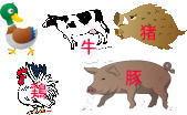 鶏、鴨、猪、豚、牛